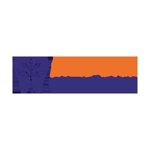 Dина-Стом