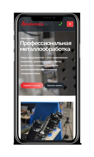 Создание сайта для компании Анатомика-фото